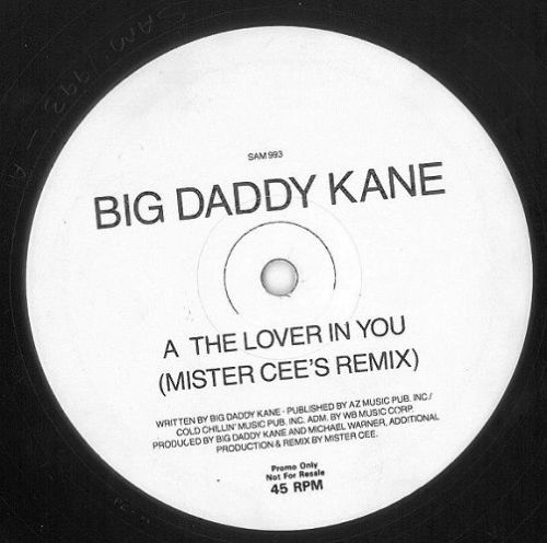 BIG DADDY KANE The Lover In You (Remix) Vinyl Record 12 Inch Warner Bros. 1992 Promo